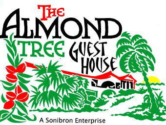 Almond Tree Guest House